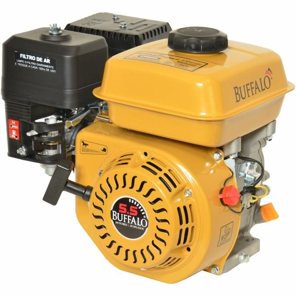 Motor BFG 5.5 Gasolina